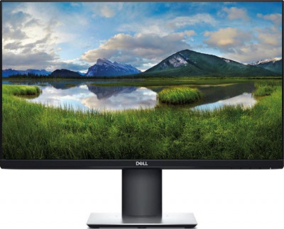 Dell P2421D